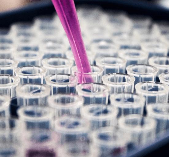 Acquisition de leads organiques PolymerExpert